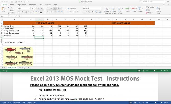 MOS_Excel_Mock