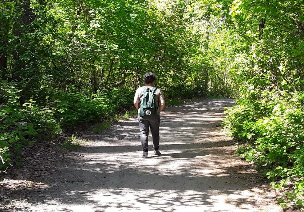 Woman walking alone on a trail in the forest, wearing a green backpack.