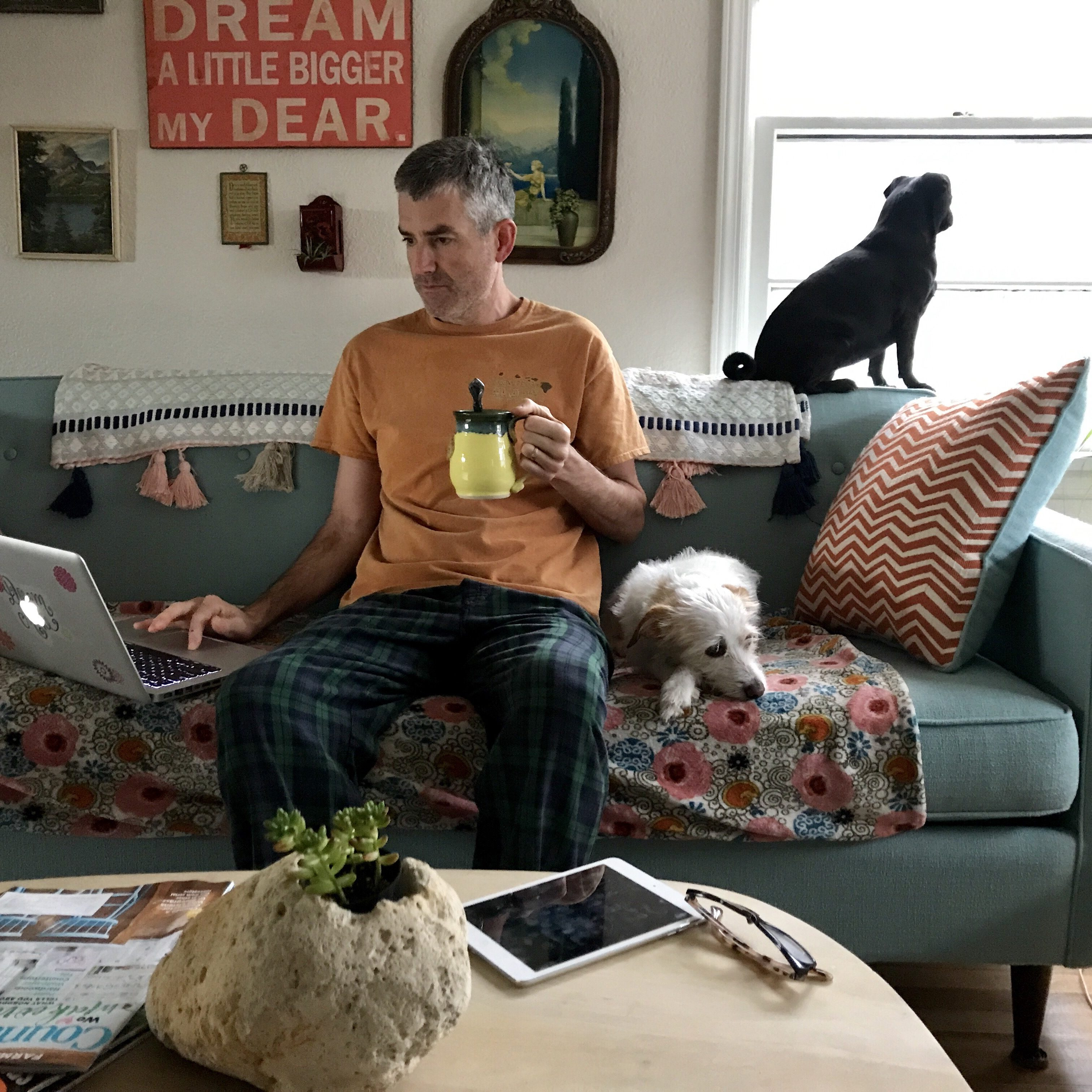 Streaming movies on the couch with pets